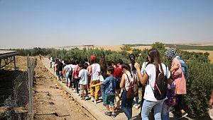 Haliliyeli öğrenciler Göbeklitepe'yi gezdi