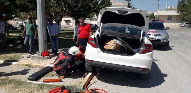 Sınırda haber takip eden basın mensubunun aracına kedi girdi