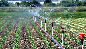 2019 Sulama sezonunda Şanlıurfa'da, 481 bin 810 dekar arazi sulandı