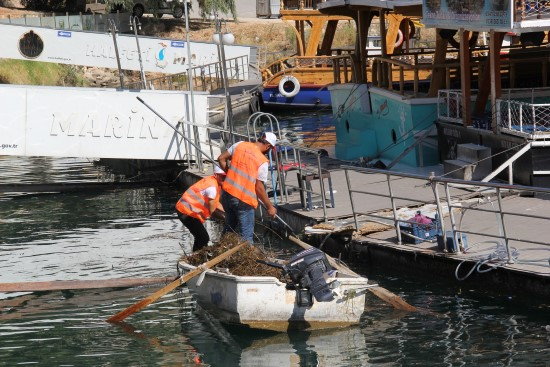 Fırat Nehri temizleniyor
