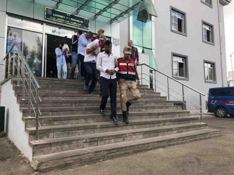 Fıstık ve hayvan hırsızlarına eş zamanlı operasyon: 11 gözaltı