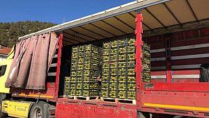 Barış Pınarı Harekatı'nda görevli Mehmetçik'e 26 ton Eğirdir elması