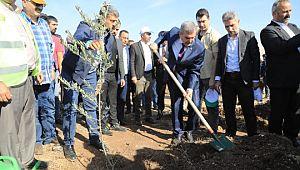 Beyazgül, ağaçlandırma kampanyasına katıldı