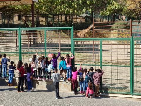 Birecikli öğrenciler ara tatilde hayvanat bahçesini gezdi