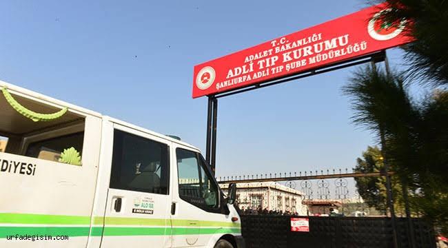 Şanlıurfa'da üniversiteli genç kazada hayatını kaybetti