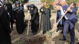 Betül Beyazgül, engelli öğrencilerle ağaç dikti