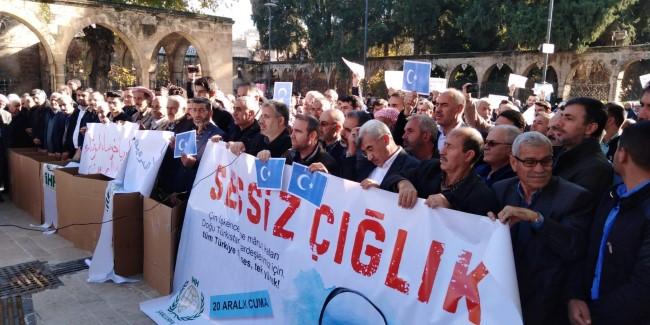 Şanlıurfa'da Çin'in Doğu Türkistan protestosu