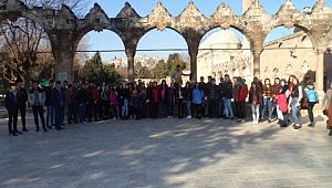 Cizreli öğrenciler Şanlıurfa'yı gezdi