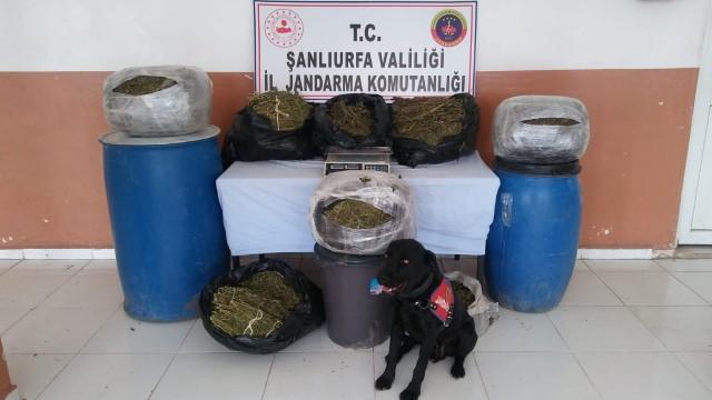 Uyuşturucu satıcılarına eş zamanlı operasyon: 10 gözaltı