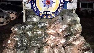 Şanlıurfa'da 241 kilogram esrar ele geçirildi