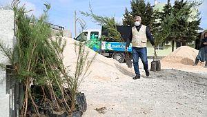 'Daha yeşil bir haliliye' için ekipler iş başında (Videolu Haber)