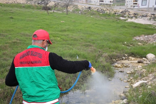 Karaköprü'de hem dezenfekte hem de ilaçlama devam ediyor (Videolu Haber)