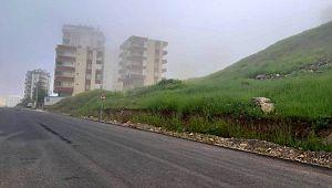 Şanlıurfa'da boş cadde ve sokakları sis kapladı