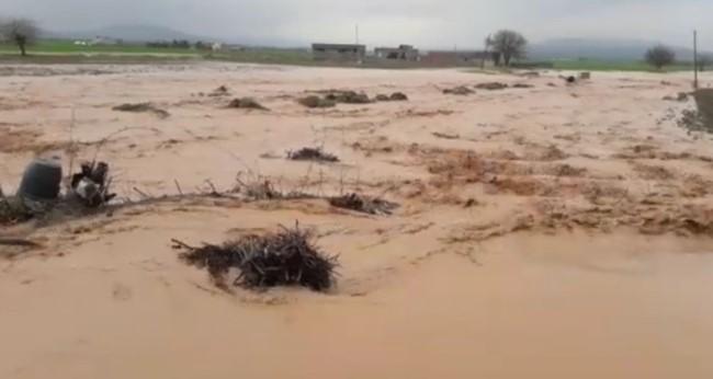Şanlıurfa kırsalını sel vurdu