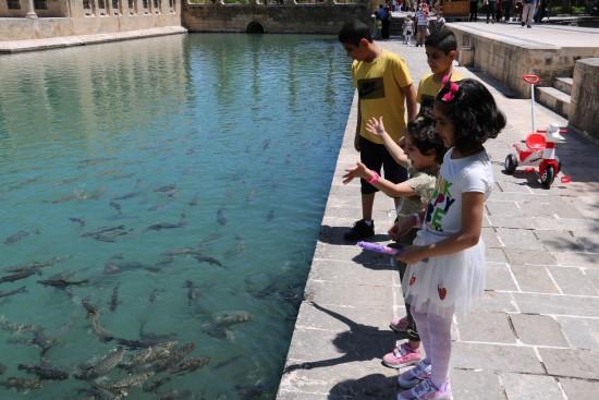 Kısıtlama molasında çocuklar Balıklıgöl'e akın etti