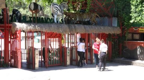 Antep Hayvanat Bahçesine urfalıların ilgi odağı