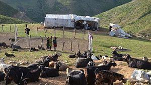 Doğu ve Güneydoğu'dan gelen göçerler Muş'un serin yaylalarında konaklamaya başladı