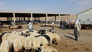 Hayvan pazarında çubuklu anlaşma dönemi