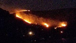 Halfeti'de çıkan orman yangını 16 saatte söndürüldü (Videolu Haber)