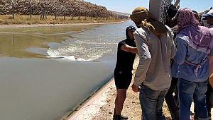 Şanlıurfa'da feci olay (Videolu Haber)