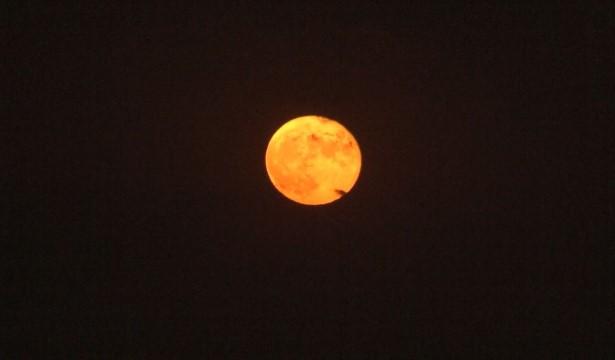 Şanlıurfa'da kızıldan altın sarısına dönen ay hayran bıraktı (Videlu Haber)