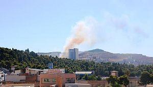 Şanlıurfa'da orman yangını (video)