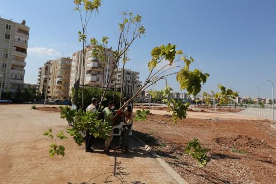 Canpolat: Karşıyaka'ya modern bir park kazandırıyoruz (Videolu Haber)