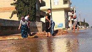 Suruç'ta taban suyu yükseldi, mahalleleri su bastı (Video)