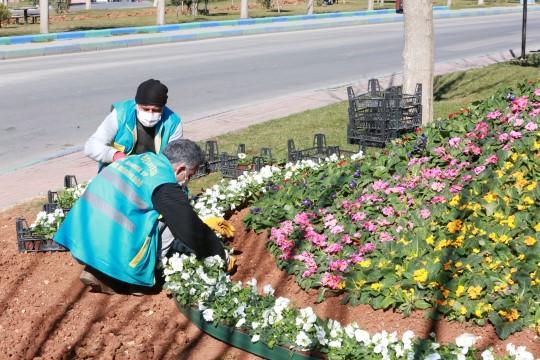 Doğanın harika renkleri, Eyyübiye'de toprakla buluşuyor (Videolu Haber)