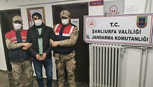 Şanlıurfa'da 15 yıldır aranan cinayet hükümlüsü yakalandı