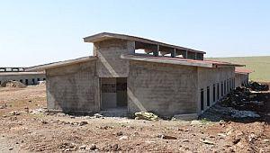 Şanlıurfa'da hayvan rehabilitasyon merkezi kuruluyor