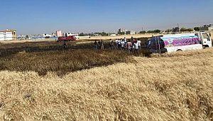 Buğdayın yandığını gören mahalleli tarlaya koştu ( Video Haber )