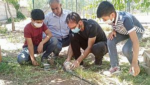Yaralı bulunan peçeli baykuşa öğretmenler sahip çıktı