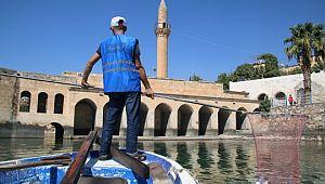 Büyükşehir'den 'saklı cennet halfeti'de kapsamlı temizlik ( Video Haber )