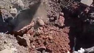 Siverek'te kuduz karantinası