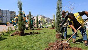 Haliliye'de parklarda yenileme çalışması ( Video Haber )