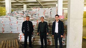 Haliliyede 200 ton mercimek tohumu dağıtılacak