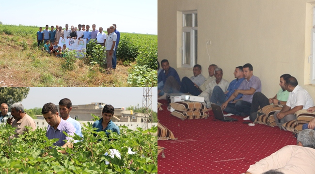 Harranda Milli Tarım Projesi Hızla İlerliyor