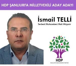 Türkiyenin sorunları çözülmeden Urfa'nın sorunları çözülmez