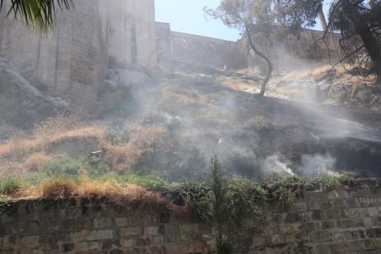 Tarihi Balıklıgöl'de anız yangını