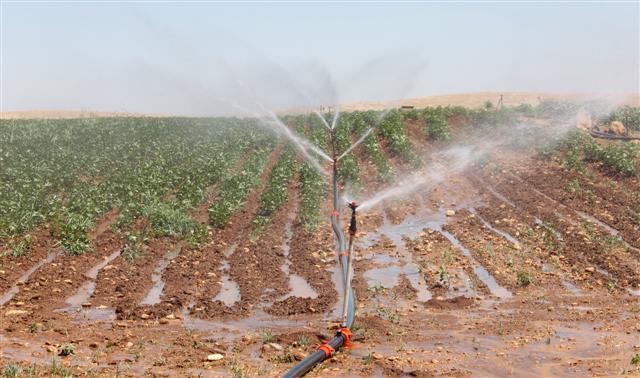 Şanlıurfa?da Borçlu Çiftçiler İçin ?Son Gün 25 Ağustos