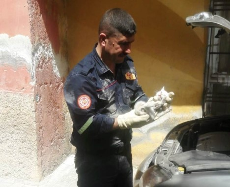 Otomobilde sıkışan kediyi itfaiye ekipleri kurtardı