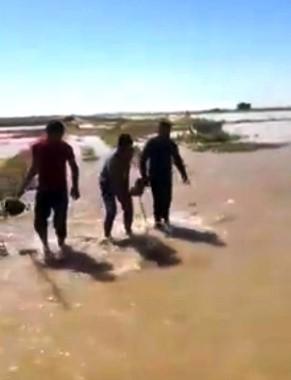 Suruç'ta sulama borusu patladı, tarlalar su altında kaldı