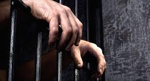 Şanlıurfa'daki terör operasyonunda yakalanan 13 kişi daha tutuklandı