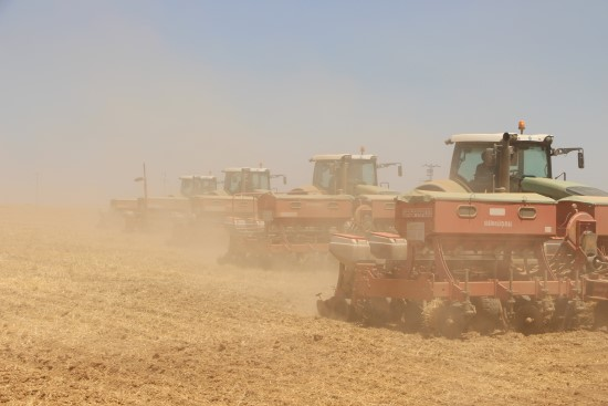 Ceylanpınar'da 110 bin dekarlık alanda mısır ekimi başladı