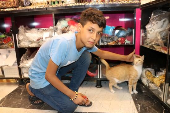 Biriktirdiği harçlığıyla sokak kedilerine et alıyor