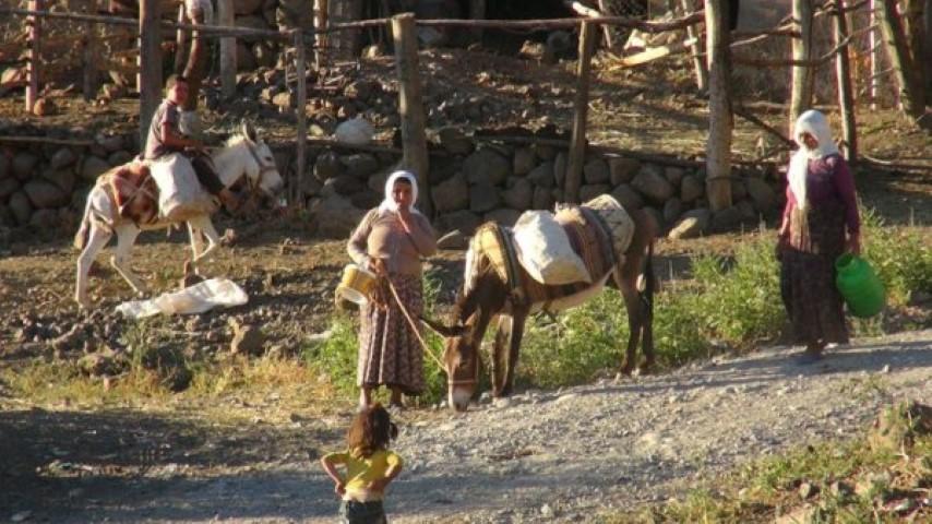 Susuz Köy Eşekle İçme Suyu Taşıyor